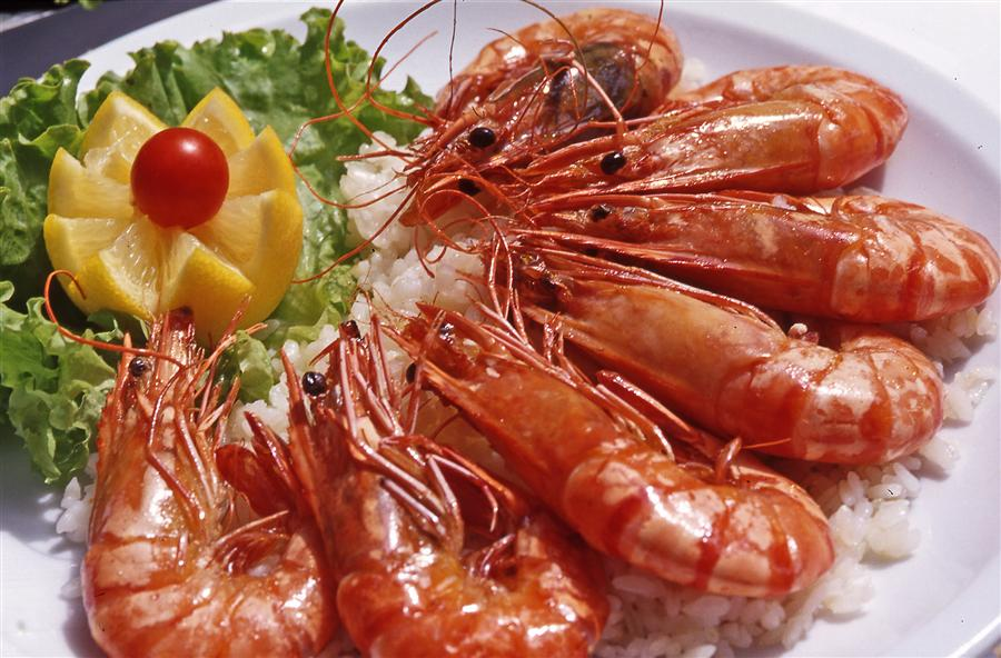 croatia_gastronomy_0005