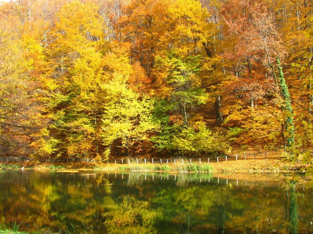 Jankovacko jezero