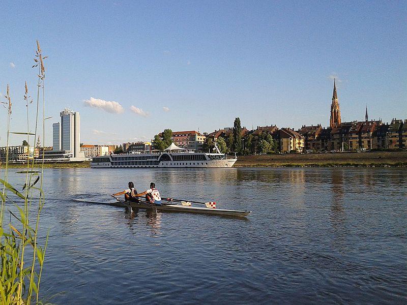 Osijek-cruiser-veslaci-2016