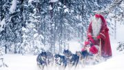 santa-husky-sled-rovaniemi-3-900x506