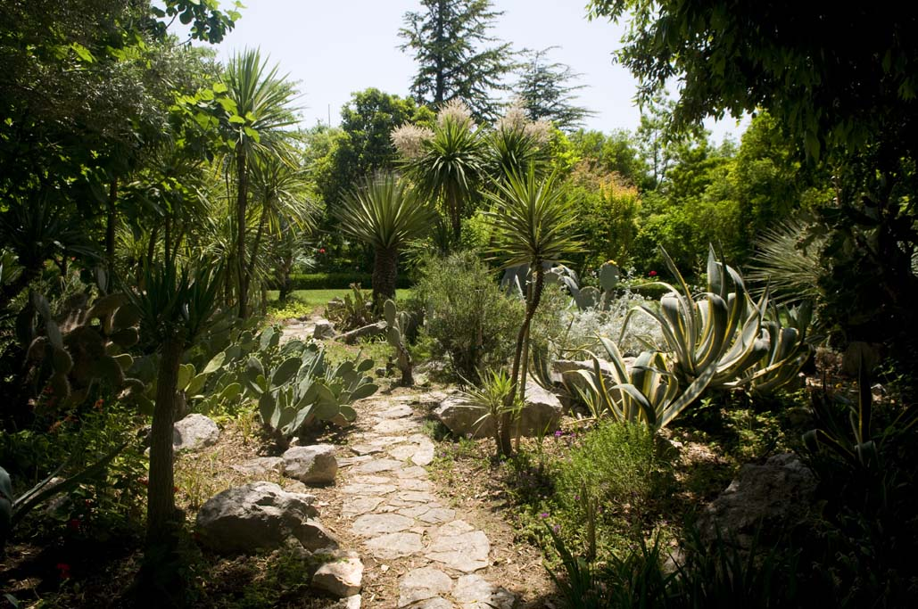 Botanicki Vrt Os Ostrog K Luksic 1 Croatian Hot Spots