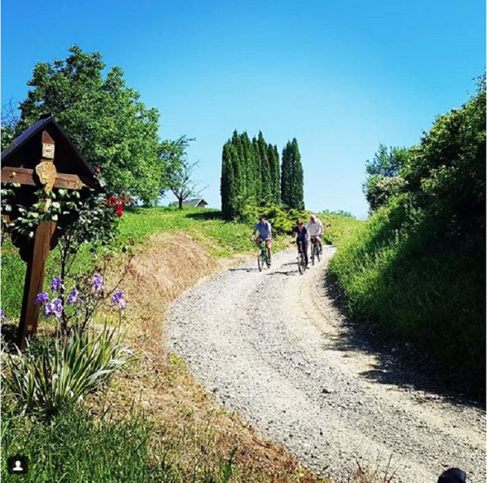 krenite biciklom u vinogradarski raj Zlatne doline
